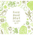 raw food diet vegetarian vintage background with vector image vector image