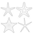 set graphic black and white images sea stars vector image vector image