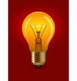 shining bulb vector image vector image
