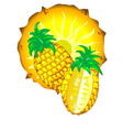 sliced pineapple vector image vector image