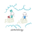 somnology flies in the cushions of the patient vector image