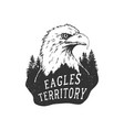 the eagle territory vector image