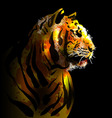 Digital painting of a tigers head vector image