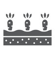 growing carrots glyph icon farming agriculture vector image