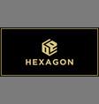 oe hexagon logo design inspiration vector image vector image