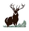 deer and grass portrait vector image