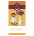 package design for dried sliced porcini mushrooms vector image vector image