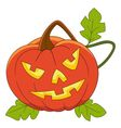 pumpkin on halloween vector image vector image