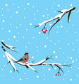 bullfinch under the snowfall vector image vector image