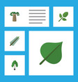 flat icon natural set of timber foliage spruce vector image vector image