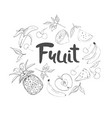 set hand drawn doodle fruits fresh and tasty vector image