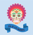 skull with a pattern symbol of a mexican holiday vector image