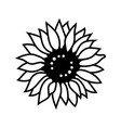 sunflower icon thin line style vector image