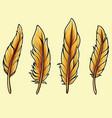 bird feathers thanksgiving autumn theme vector image vector image