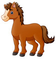 brown horse cartoon vector image