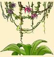 cartoon tropical plants bush and lianas with vector image vector image