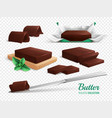 chocolate butter realistic set vector image vector image