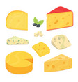 delicious fresh sliced cheese variety icon cheese vector image vector image