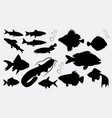 fish animal silhouette vector image vector image