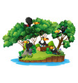 isolated nature island with toucan vector image vector image