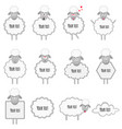 sheeps and lambs with frames for note and text vector image