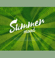 summer mood colorful banner vector image