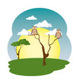 cute owls in tree on the field scene vector image vector image
