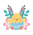 happy easter day chicken in eggshell flowers vector image