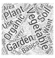 Organic Vegetable Garden Basics Word Cloud Concept vector image vector image
