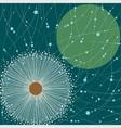 square card white dandelion vector image