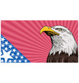 bald eagle background vector image vector image