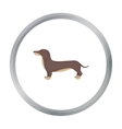 Dachshund icon in cartoon style for web vector image vector image