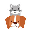 pets dog and cat on white background vector image vector image