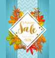 seasonal autumn banner or poster vector image vector image