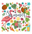 summer symbols food and drink flamingo and vector image