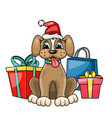 christmas dog in red santa hat with gift boxes vector image