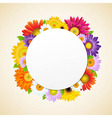 Colorful Gerbers Flower vector image vector image