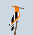 hoopoe is sitting vector image