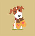 jack russell puppy character with slippers in its vector image vector image
