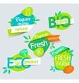 set healthy organic food labels vector image
