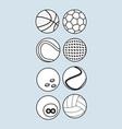 sport balls equipment vector image