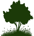 Tree on a hill with grass and butterflies vector image vector image