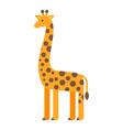 flat style of giraffe vector image