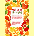 autumn fall leaves poster template vector image vector image