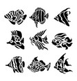fish animal aquatic black silhouette vector image vector image