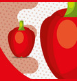 fresh vegetable red pepper bell on dots background vector image vector image