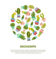 succulents banner template with place for text vector image