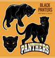 black panthers - set isoled vector image vector image