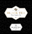 black tea logo seamless pattern label classic styl vector image