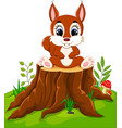 cartoon cute baby squirrel on tree stump vector image vector image